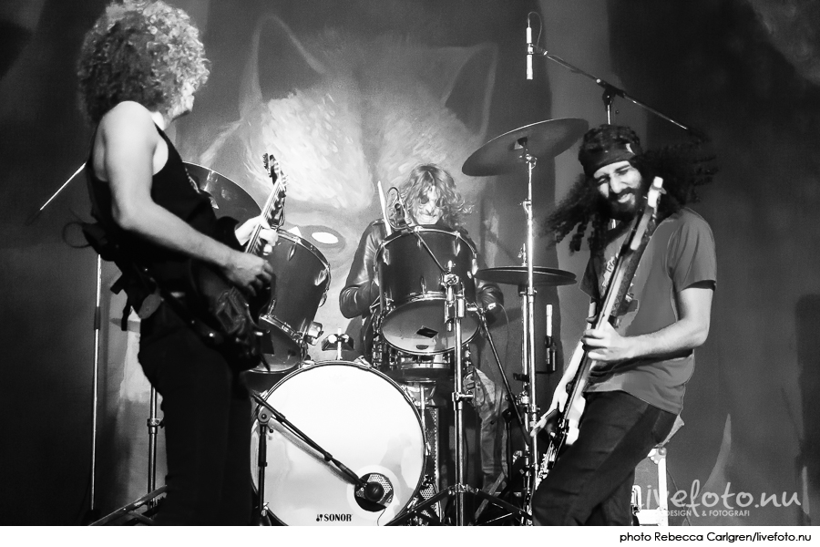 160831_wolfmother-tradgarn_Photo_Rebecca-Carlgren_livefoto.nu_-15